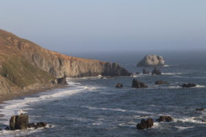Goat Rock Beach in Sonoma Coast State Park